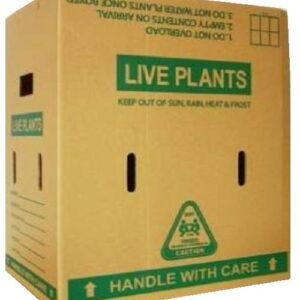 Live Plant Cartons